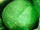 Свежее фото Разное Картофель и овощи от производителя, УРОЖАЙ 2016г, ! 36099923 в Барнауле