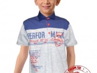 Скачать бесплатно foto  Детские трикотажные футболки оптом 35850462 в Барнауле
