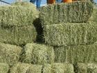 Новое фотографию  продаю сено в тюках дешево 58805567 в Челябинске