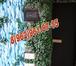 Изображение в Электрика Электрика (услуги) Мы осуществляем все виды ЭЛЕКТРОМОНТАЖНЫХ в Дмитрове 0
