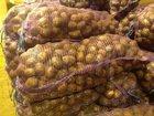 Фото в   Закажи картофель оптом по 18 руб/кг.   Первым в Екатеринбурге 18