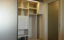 Шкаф, шкаф-купе по индивидуальному проекту