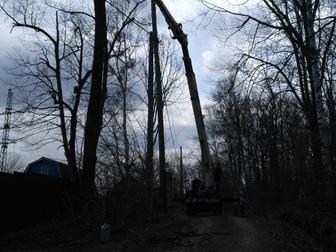 Увидеть foto Другие строительные услуги Спил, валка и кронирование деревьев 67712711 в Хабаровске
