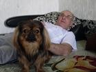 Скачать изображение Разные услуги Вязка собак 34687746 в Ханты-Мансийске