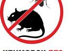 Изображение в Прочее,  разное Разное Уничтожение грызунов (дератизация) проводиться в Щербинке 1000