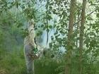 Фото в   Уничтожение лесных клещей- это целый комплекс в Истре 450