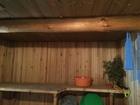 Увидеть фотографию Сады продам сад 34840799 в Ижевске