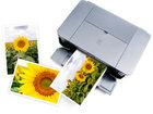 Фотография в   Печать фотографий любых размеров до А-3 формата в Ижевске 0