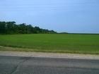 Продается участок сельскохозяйственного назначения в Юбилейн