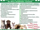 Новое изображение  Ветеринарный врач 37957803 в Юрге