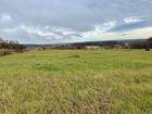 Новое фото  Продаем землю с/х назначения, 34 га, Жуков, Овчинино 71284065 в Калуге