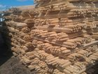 Скачать фотографию  Черенок оптом 34215722 в Каспийске