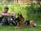 Фотография в Авто Шины Дрессировка собак в Елабуге - эффективный в Казани 16000