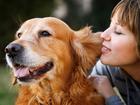 Новое фотографию  Дрессировка собак в Набережных Челнах на все 100 % 39124612 в Набережных Челнах