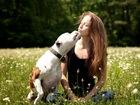 Увидеть изображение  Дрессировка и воспитание собак в Набережных Челнах 39124633 в Набережных Челнах