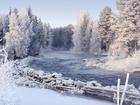 Просмотреть фото  Приму в дар 39424378 в Кисловодске