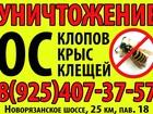 Новое фотографию Разное Уничтожение Клопов,Тараканов, Ос,шершней 36479988 в Боровске
