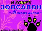 Скачать изображение Стрижка собак Стрижка собак и кошек в Клину, Зоосалон Мягкие лапки 44199574 в Клине