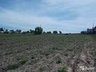 Уникальное изображение  Продам земельный участок, 38648898 в Коломне
