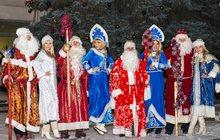 Пригласите  Дедушку Мороза и Снегурочку