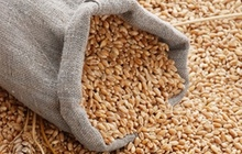 Зерно, комбикорм, отруби, премиксы