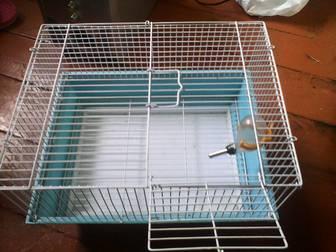 Уникальное foto  Клетка для крысы/хомяка 33003742 в Комсомольске-на-Амуре