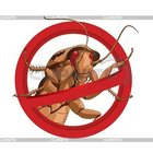 уничтожение-выведение травля клопов тараканов Нано технология