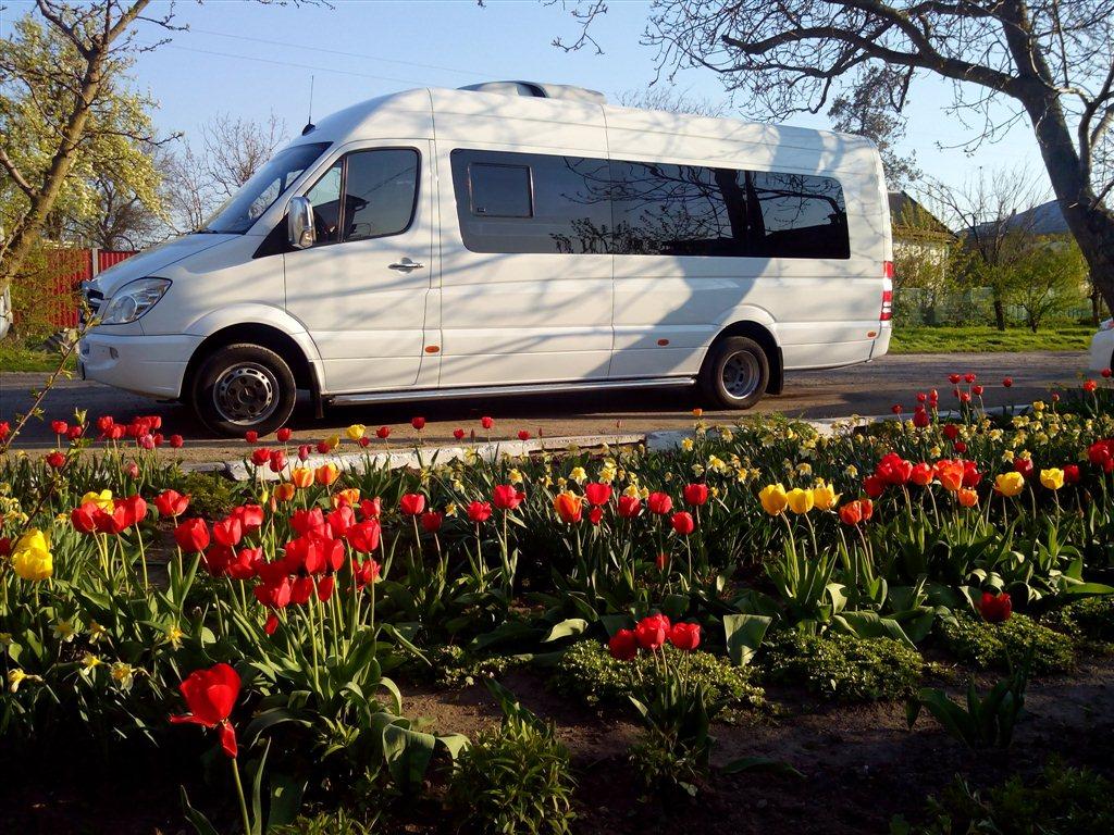 изображение Авто на заказ Заказ ...: krasnodar-93.buyreklama.ru/krasnodar/zakaz-komfortabelnogo-avtobusa...