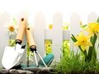 Новое фото Ландшафтный дизайн Уход за садом, Озеленение, 59577060 в Красноярске