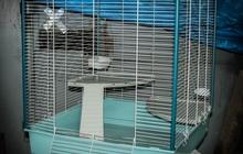 Большая клетка для грызунов и т, п