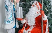 Профессиональный Дед Мороз и Снегурочка на дом, Аниматоры