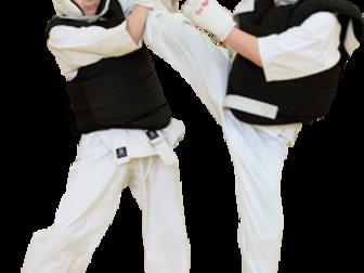 Смотреть фото Спортивные школы и секции Набор в спортивные группы с 4 лет киокусинкай каратэ 36865516 в Красноярске