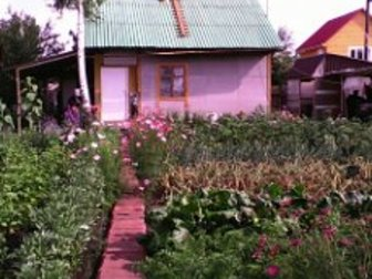 Уникальное изображение Сады продам дачу емельяновский рн Рябинено 37431650 в Красноярске