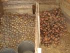 Скачать изображение  Подземная овощная яма 39138720 в Краснокамске