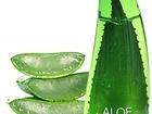Скачать бесплатно фотографию  Универсальный Гель с Алоэ Holika Holika Aloe 99% Soothing Gel 250 мл, 34305339 в Москве