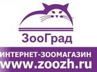 Фото в   Интернет зоомагазин Зооград  Товары для в Ижевске 240