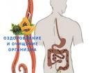 Увидеть фото  Программы очищения организма от паразитовм -бальзам Алатоо, масло Расторопши Mehrigiyo 68573599 в Кургане