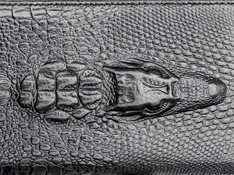 Новое фото  Портмоне Wild Alligator 34381241 в Москве