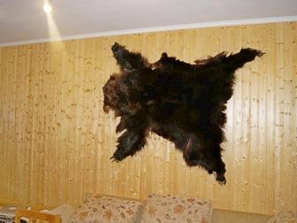 Смотреть foto  Охотхозяйство в Велижском районе Смоленской области 40512754 в Смоленске