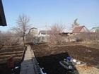 Уникальное изображение Сады Продам хороший сад в Калибровщике – 2 69345576 в Магнитогорске