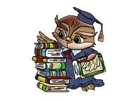 Дипломные, курсовые работы по экономике Выполняю работы по экономике, бухгалтерс