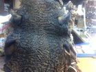 Смотреть foto Женская одежда Каракуль Сур в большом кол-ве 32615706 в Москве