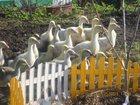 Уникальное foto Птички Индоутка, Гуси, Перепела, Продажа 33210188 в Москве