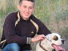 Смотреть фото Услуги детективов Дрессировка собак, 1-е занятие бесплатно! 33960548 в Москве