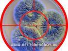 Фотография в Услуги компаний и частных лиц Разные услуги Компания Тараканов Нет, проводит ряд мероприятий в Москве 5500