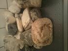 Скачать фото  необработанное сырье из подделочных камней кальцита и кварца 200кг 41834580 в Moscow