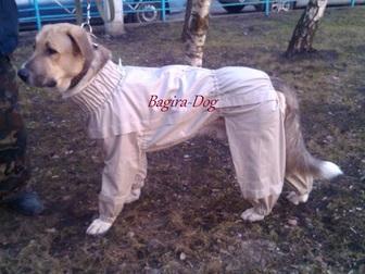Уникальное фото Услуги для животных Комбинезоны от клещей 32717100 в Москве
