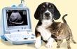 Ветеринарные сканеры УЗИ линейки SonoScape