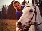 Изображение в   Продается лошадь. Чистый Араб  60 000 руб. в Москве 60000