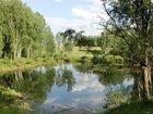 Фотография в   Земля 4. 1га со своим прудом, лесом и рекой, в Домодедово 12900000
